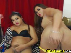 Two Shemales Strip Teasing Horny on Cam