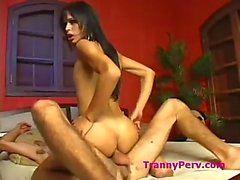 Skinny tranny analed in riding pose