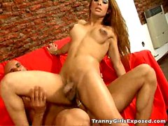 Tattooed chesty tranny girl Morena sucking a monster penis