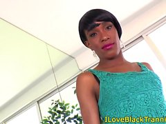 Ebony tranny stripteases than pleasures self
