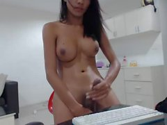 Spicy thai tgirl squirts a tasty load on her desk
