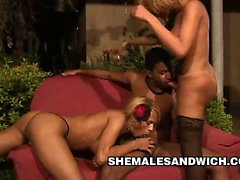 Beautiful blonde shemales Aline Santos and Mickelly double