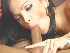 Big Transsexual Ass 7 - Scene 1